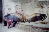 Ruperto, buitre domesticado que paseaba por el pueblo en los años 70 y símbolo del ArnedilloFoto.