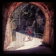Vía Verde ciclista de 34 km hasta Calahorra.